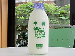 名津井牧場の豊富な乳量を誇る乳牛から絞った、搾りたての牛乳